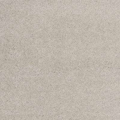 Shaw Floors Nfa/Apg Barracan Classic I Sterling 00511_NA074