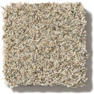 Shaw Floors Tempt Me III Truly Bold III Oatmeal E9456_00102
