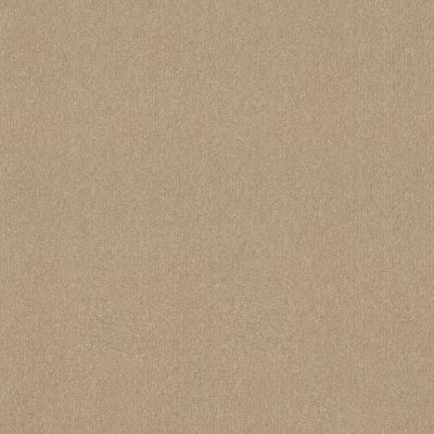 Shaw Floors Respected Antique Parchment 00165_NA150