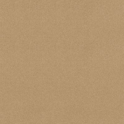 Shaw Floors Respected Popsicle Stick 00260_NA150
