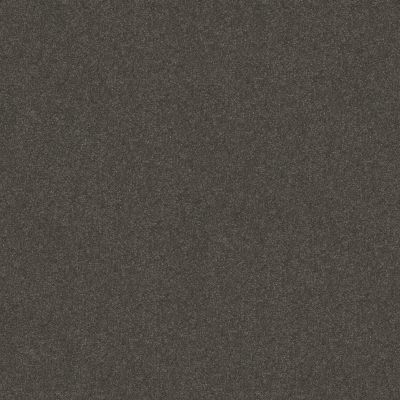 Shaw Floors Respected Mountain Shadow 00562_NA150