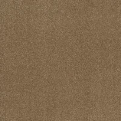 Shaw Floors Respected Sienna 00762_NA150