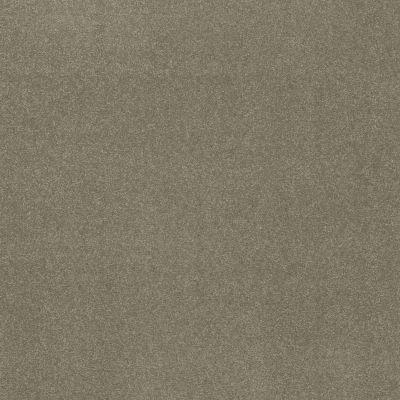 Shaw Floors Nfa Refinement Silver Sage 00360_NA151