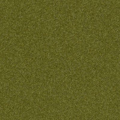 Shaw Floors Nfa Refinement Moss Grove 00362_NA151