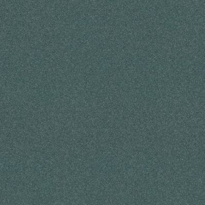 Shaw Floors Refinement Agave 00460_NA151