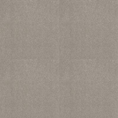 Shaw Floors Nfa Refinement Stonehenge 00560_NA151