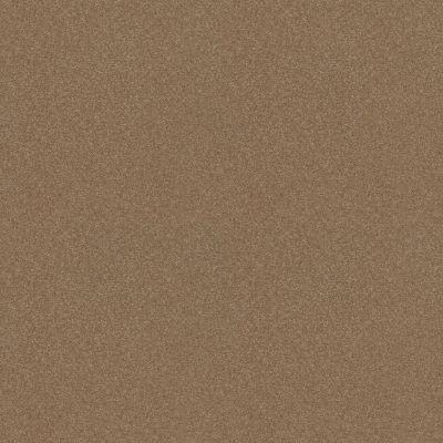 Shaw Floors Refinement Burnt Ivory 00761_NA151