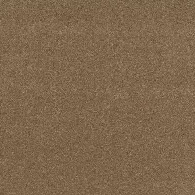 Shaw Floors Nfa Refinement Sienna 00762_NA151