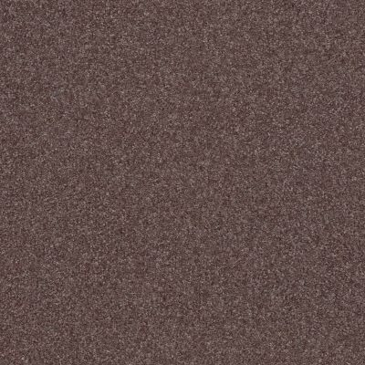 Shaw Floors Nfa Refinement Raven 00961_NA151