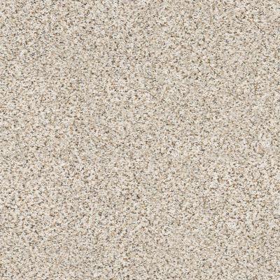 Shaw Floors Nfa/Apg Vigorous Mix I Pixels 00170_NA169