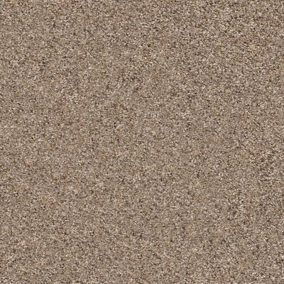 Shaw Floors Nfa/Apg Vigorous Mix I Cobble Drive 00771_NA169