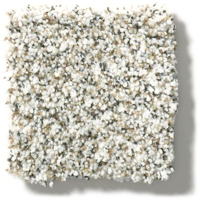 Shaw Floors Nfa/Apg Vigorous Mix III Whitewash 00177_NA171