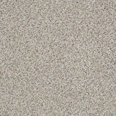 Shaw Floors Nfa/Apg Vigorous Mix III Silver Lining 00572_NA171