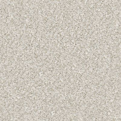 Shaw Floors Nfa/Apg Privy Baby's Breath 00170_NA173