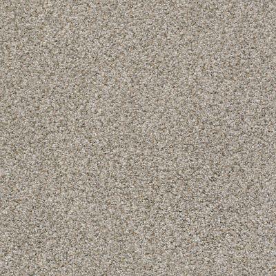 Shaw Floors Nfa/Apg Privy Cobble Stone 00573_NA173