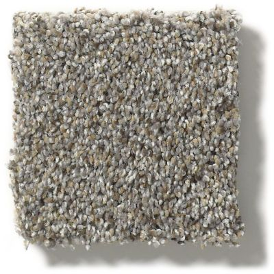 Shaw Floors Nfa/Apg Get With It Antique Pin 00571_NA174