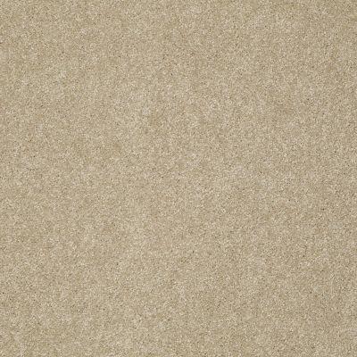 Shaw Floors Nfa/Apg Color Express I Hazelnut 00750_NA208
