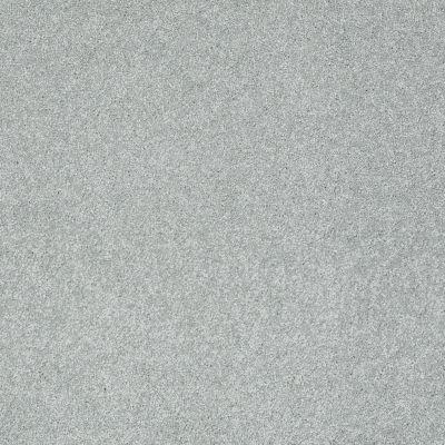Shaw Floors Nfa/Apg Color Express II Pewter 00551_NA209