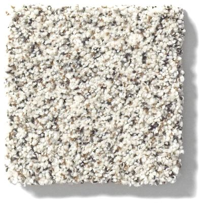 Shaw Floors Nfa/Apg Color Express Accent I Avalanche 00173_NA214