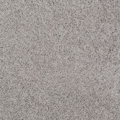 Shaw Floors Nfa/Apg Color Express Twist I Anchor 00546_NA217