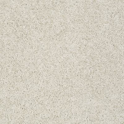 Shaw Floors Nfa/Apg Color Express Twist II Lg Alpaca 00140_NA219
