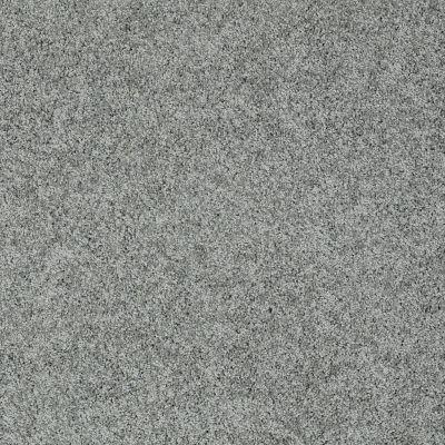 Shaw Floors Nfa/Apg Color Express Twist II Lg Reflection 00541_NA219