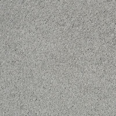 Shaw Floors Nfa/Apg Color Express Twist II Lg Pewter 00551_NA219