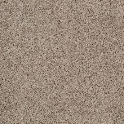 Shaw Floors Nfa/Apg Color Express Twist II Lg Threshold 00732_NA219