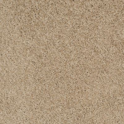 Shaw Floors Nfa/Apg Color Express Twist II Lg Hazelnut 00750_NA219