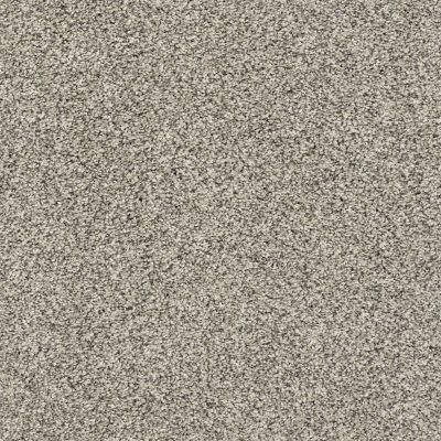 Shaw Floors Sweet Appeal Pencil Sketch 00510_NA236