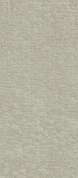 Shaw Floors That's The One Classic Taupe 00105_NA238