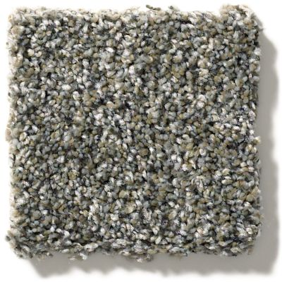 Shaw Floors You Got It II All Over It 2 Granite Dust E9871_00511