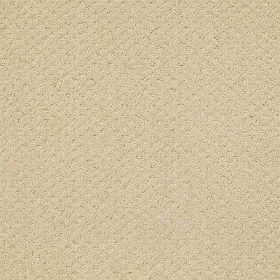 Shaw Floors Nfa/Apg Meaningful Design Frost 00104_NA265