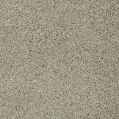 Shaw Floors Nfa/Apg Detailed Elegance II Cityscape 00109_NA333