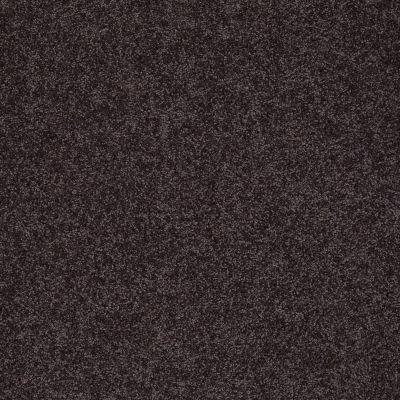 Shaw Floors Nfa/Apg Detailed Elegance II Urban Loft 00951_NA333