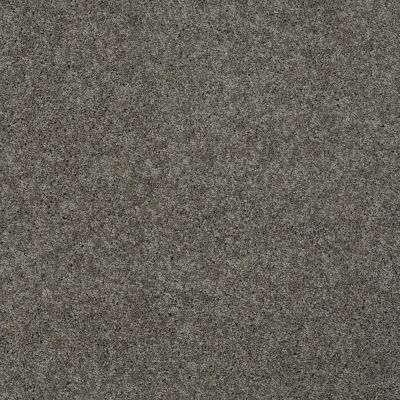 Shaw Floors Nfa/Apg Detailed Elegance III Grey Flannel 00501_NA334