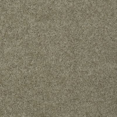 Shaw Floors Nfa/Apg Detailed Elegance III Smooth Slate 00704_NA334