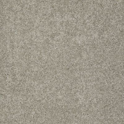Shaw Floors Nfa/Apg Detailed Elegance III Rocky Coast 00750_NA334