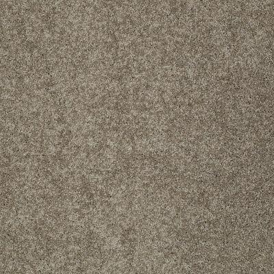 Shaw Floors Nfa/Apg Detailed Elegance III Flax 00751_NA334