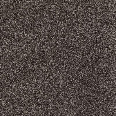 Shaw Floors Nfa/Apg Detailed Tonal Chocolate 00758_NA340