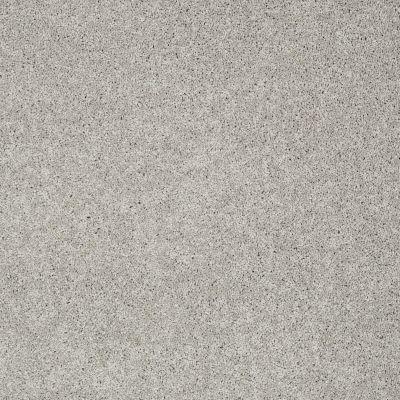 Shaw Floors Nfa/Apg Detailed Elegance I Ash 00550_NA341