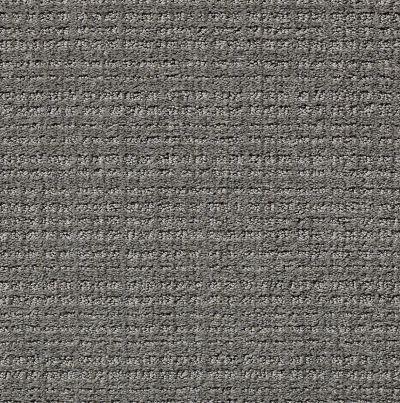 Shaw Floors Common Ground Metal 00577_NA450