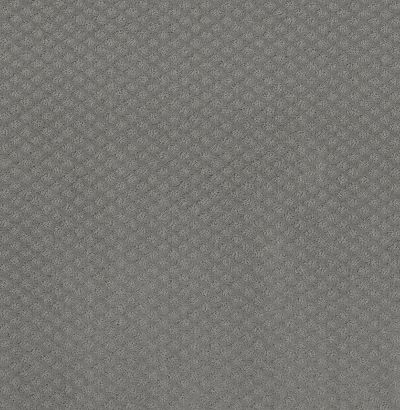 Shaw Floors Final Thought Grey Fox 00504_NA451
