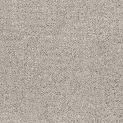 Shaw Floors Main Squeeze Split Sediment 00104_NA452