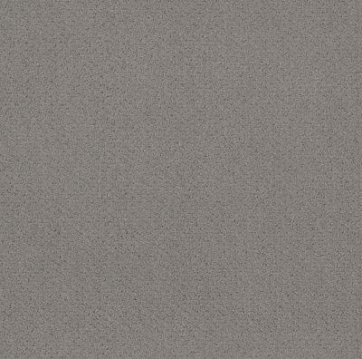 Shaw Floors Main Squeeze Grey Fox 00504_NA452