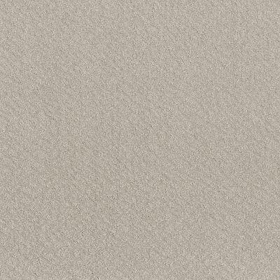 Shaw Floors Mod Beauty Winters Dawn 00102_NA455