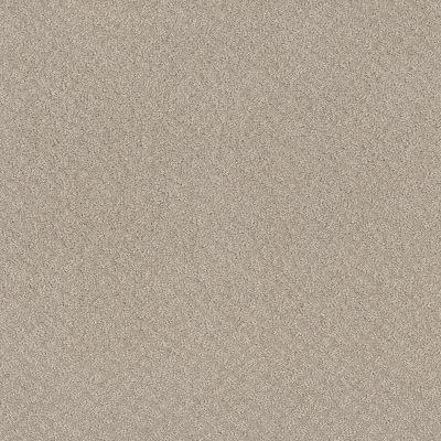 Shaw Floors Mod Beauty Fossil Path 00108_NA455