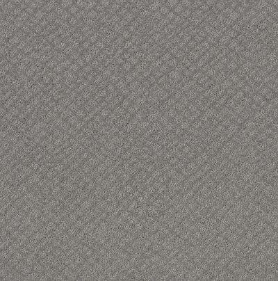 Shaw Floors Mod Beauty Grey Fox 00504_NA455