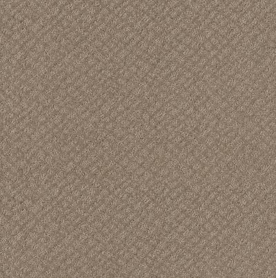 Shaw Floors Mod Beauty Desert View 00701_NA455