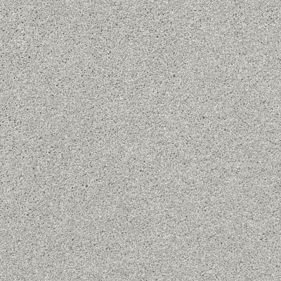 Shaw Floors Always On Time Vapor 00570_NA456